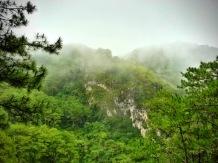 fog and mist everywhere