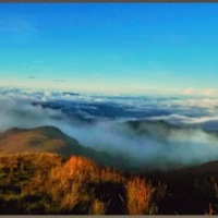 Mt. Pulag (the sea of clouds)