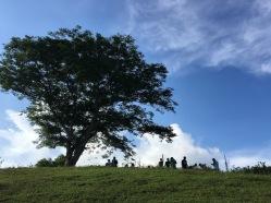 Chalet Hills