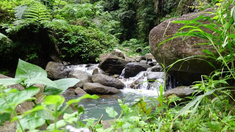caroro waterfall river trail